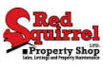Red Squirrel Property Shop Ltd, Newport logo